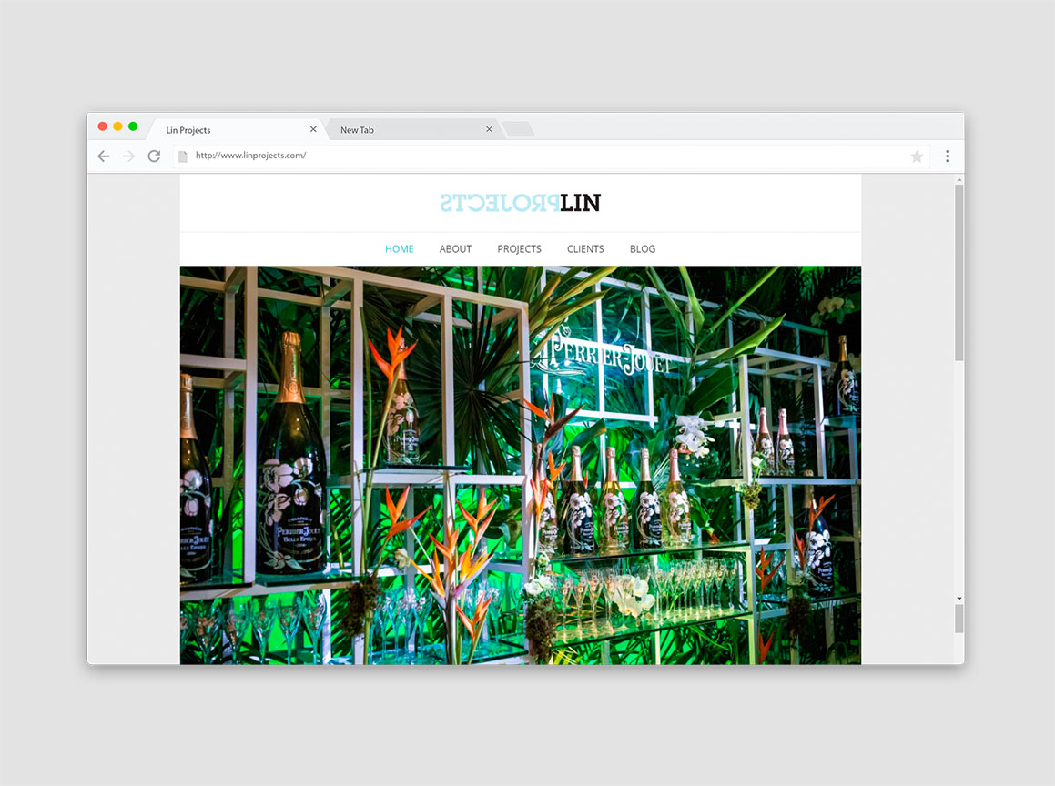 Lin Projects Website Design 1