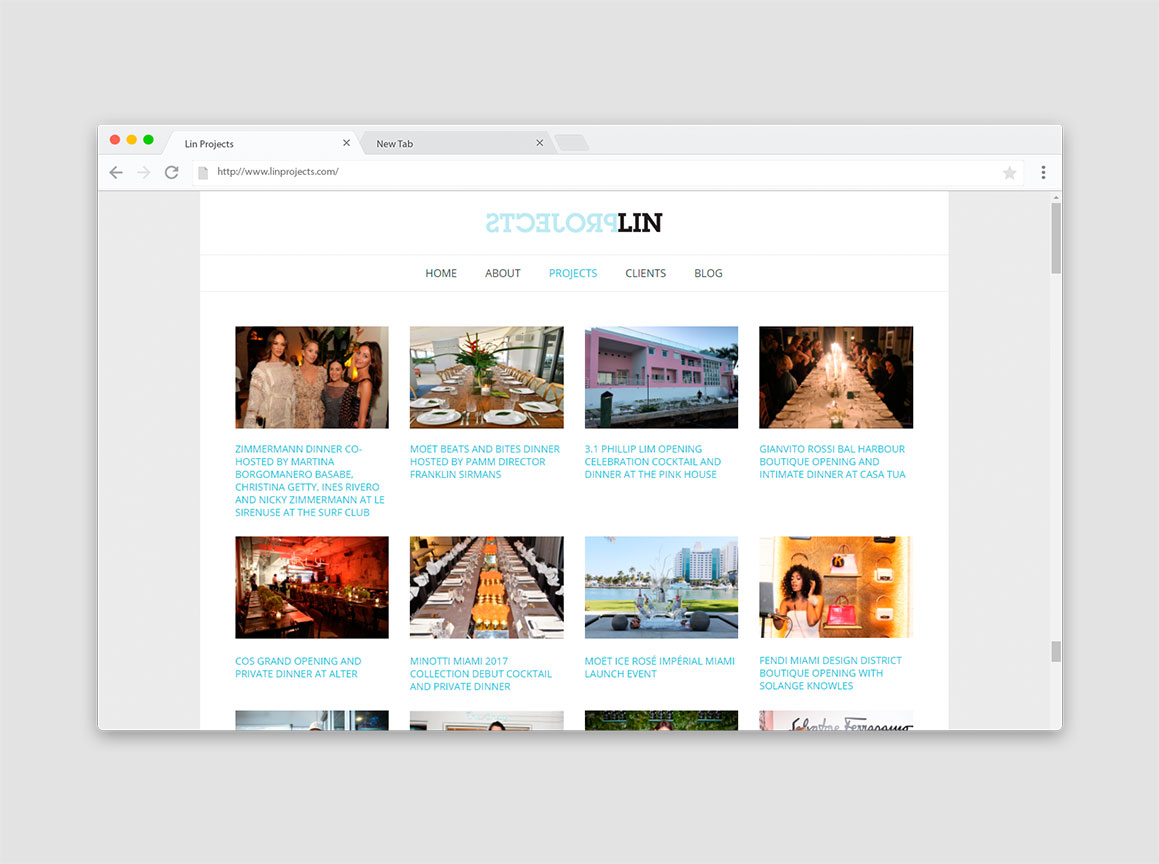 Lin Projects Website Design 2